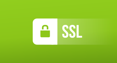 HTTPS On a Website  How To Quickly Get an SSL Certificate | Blend4Web
